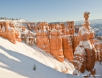 Winter-Morning-in-Bryce-Canyon