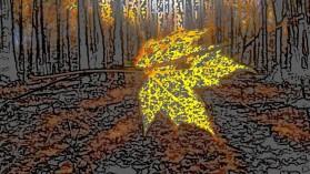 Golden Leaf by Patti Larson